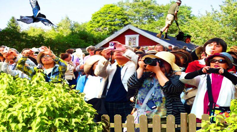 Allemansrättens konsekvenser: Vaknade av ett tiotal sydostasiatiska turister i sin trädgård
